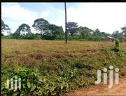 Land for Sale in Matuga 2acres | Land & Plots For Sale for sale in Central Region, Kampala