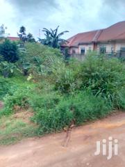 Mukono Plots Opp Global Junior at 25m | Land & Plots For Sale for sale in Central Region, Mukono