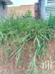 Mukono Kyetuume Plots at 25m | Land & Plots For Sale for sale in Central Region, Mukono