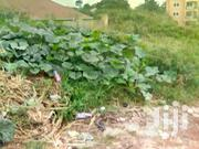 Dundu Plots Tittles on Table at 15m | Land & Plots For Sale for sale in Central Region, Wakiso