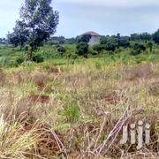 Titled Half Acre Forbsale in Kawuku Ziru Ebb Rd at 130M Ugx | Land & Plots For Sale for sale in Central Region, Kampala