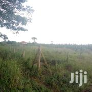 Land 1 Acre In Kitukutwe Kira Road | Land & Plots For Sale for sale in Central Region, Kampala