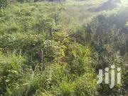 Luwero Land for Sale | Land & Plots For Sale for sale in Central Region, Luweero