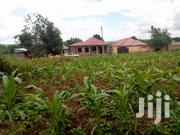 12 Decimals In Kira For Sale | Land & Plots For Sale for sale in Central Region, Kampala