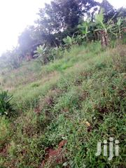 35~25feet Wakiso | Land & Plots for Rent for sale in Central Region, Wakiso