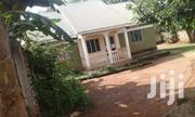 Very Nice Home On Quick Sale Nalugala Garuga Ntebe Rd With Boysquarter | Houses & Apartments For Sale for sale in Central Region, Kampala