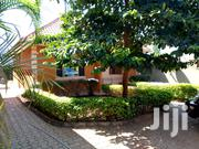 Najjera Executive Two Bedroom House for Rent at 350K | Houses & Apartments For Rent for sale in Central Region, Kampala