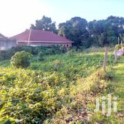 They Are 15 Decimals Ready Tittle for Sale in Kyanja Komamboga at S | Land & Plots For Sale for sale in Central Region, Kampala