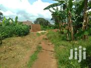 Very Hot Plot on Forcedsale in Busabala Near Friends Beanch Only 13.5m | Land & Plots For Sale for sale in Central Region, Kampala