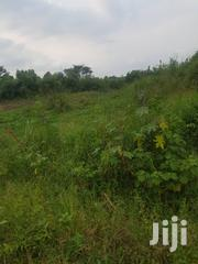 100 Acres Of Very Fertile Farm Land For Rent | Land & Plots for Rent for sale in Central Region, Kayunga