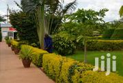 Classic Compound Designs | Garden for sale in Central Region, Kampala