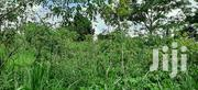 2acres Full Of Cassava Plantations | Land & Plots for Rent for sale in Central Region, Mpigi