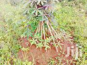 Land For Sale In Kasanje With Land Title 50 By 100ft In An Estate | Land & Plots For Sale for sale in Central Region, Kampala