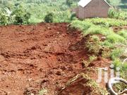 Private Mailo Land Plots at Kireka Trading Centre Bira Bujjuko From 2m | Land & Plots For Sale for sale in Central Region, Kampala