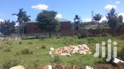 Cheap Plots For Sale In Nansana | Land & Plots For Sale for sale in Central Region, Kampala