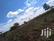 5acres for Sale | Land & Plots For Sale for sale in Central Region, Nakasongola