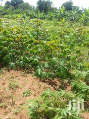1/2 Acre of Land in Kawanda, After Kawempe | Land & Plots For Sale for sale in Central Region, Kampala