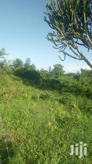 Farm Land in Kiboga District | Land & Plots For Sale for sale in Central Region, Kiboga