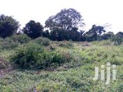 100 Acres Located in Nakasongola | Land & Plots For Sale for sale in Central Region, Nakasongola