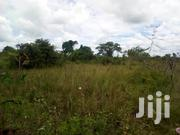 400 Acres in Nakasongola | Land & Plots For Sale for sale in Central Region, Nakasongola