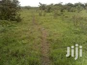 3 Square Miles in Nakaseke | Land & Plots For Sale for sale in Central Region, Luweero