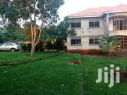 5bedroomed House Quick Sale Only 280m Ugx Matuga Town On Half Acre | Houses & Apartments For Sale for sale in Central Region, Wakiso