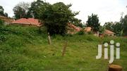 Land for Sale in Naalya-Kyaliwajjala 12 Decimals | Land & Plots For Sale for sale in Central Region, Kampala