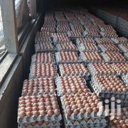 Ferterlised Layers Eggs | Livestock & Poultry for sale in Central Region, Kampala