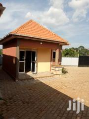 Tremendous Studio Single Room House for Rent in Kisaasi-Kyanja . | Houses & Apartments For Rent for sale in Central Region, Kampala