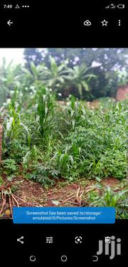 Plot for Sell in Sseguku | Land & Plots For Sale for sale in Central Region, Kampala