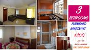 Furnished Apartment in Bukoto White Flats for Rent | Houses & Apartments For Rent for sale in Central Region, Kampala