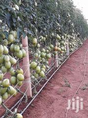 1/2 Acre Drip-kit Irrigation System. | Farm Machinery & Equipment for sale in Central Region, Kampala