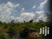 Ten Acres of Fertile With Flowing Waters on Quicksale in Kapeeka Title | Land & Plots For Sale for sale in Central Region, Kampala