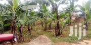 Land 2 Acres in Mpiji Uganda | Land & Plots For Sale for sale in Central Region, Kampala