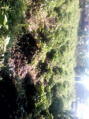 50x100 Titled Plot Found After Kakiri 3km on Hoima Rd | Land & Plots For Sale for sale in Central Region, Wakiso