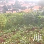 In Kyanja Komamboga 40 Decimals Ready Tittle for Sale at 230M Ugx   Land & Plots For Sale for sale in Central Region, Kampala