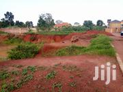 Land of Plot 100/100ft in Najjera-Kira | Land & Plots For Sale for sale in Central Region, Kampala