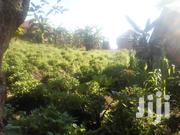 100x50 Plots In Buloba Mityana Rd 1.5km Off Main On Kisekka Rd | Land & Plots For Sale for sale in Central Region, Wakiso