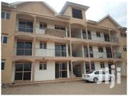 Ntinda One Bedroom House for Rent | Houses & Apartments For Rent for sale in Central Region, Kampala