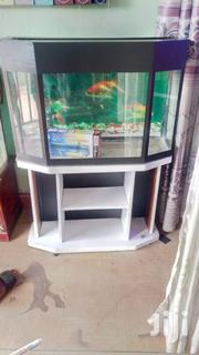 Corner Tank Aquarium | Fish for sale in Central Region, Kampala
