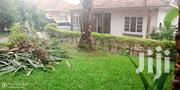 Stand Alone House for Rent in Ntinda. | Houses & Apartments For Rent for sale in Central Region, Kampala