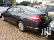 Nissan Teana 2006 Purple | Cars for sale in Central Region, Kampala