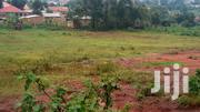 Affordable Plotes for Sale Gayaza Kyetume Not Far From Main Road | Land & Plots For Sale for sale in Central Region, Wakiso