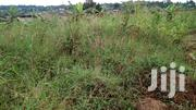 At Kkata: 1/2 Acre for Quick Sale - Private Mailo Land | Land & Plots For Sale for sale in Central Region, Wakiso