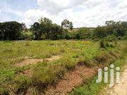 Plot Of Land 100x100ft Off Northern Bypass On A Hill With Land Title | Land & Plots For Sale for sale in Western Region, Mbarara