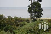 Sand Land at the Shores of Lake Victoria | Land & Plots For Sale for sale in Central Region, Masaka