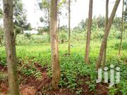 Mailo Land With Already Title Munyonyo 38 Decimals Near by the Road | Land & Plots For Sale for sale in Central Region, Kampala
