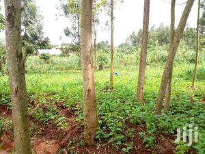 Mailo Land With Already Title Munyonyo 38 Decimals Near by the Road