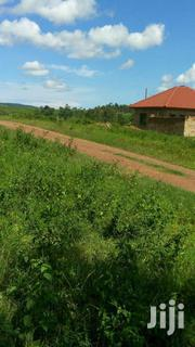 Mukono:100ftby100ft/25deicimals At 20M | Land & Plots For Sale for sale in Central Region, Mukono