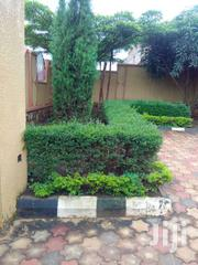 House For Sale 4bedrm +3toliets Self Contain @350m Ugx Namugogo-kira   Houses & Apartments For Sale for sale in Central Region, Kampala